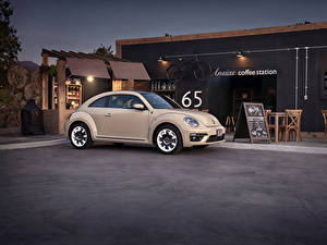 Фотография Volkswagen Металлик 2019 Beetle Final Edition Машины