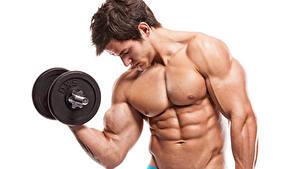 Картинки Мужчины Гантелями Мышцы Белый фон Красивые спортивный