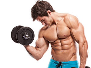 Картинки Мужчины Гантели Мышцы Белым фоном Красивая спортивные