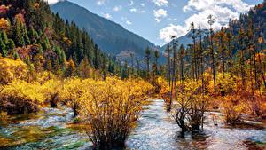 Обои Цзючжайгоу парк Китай Парки Осенние Горы Леса Пейзаж Кусты