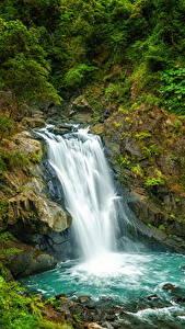 Обои для рабочего стола Тайвань Водопады Утес Кустов Природа