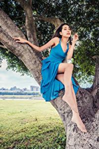 Картинка Азиатки Деревьев Сидит Платье Ноги Позирует молодая женщина