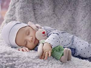 Картинки Кролики Игрушки Грудной ребёнок Спящий ребёнок