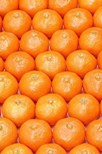 Обои Текстура Цитрусовые Мандарины Много Продукты питания