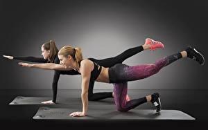 Фотография Фитнес 2 Шатенка Ноги Физические упражнения Спорт Девушки