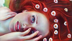 Обои Ромашки Рисованные Рыжая Смотрит Волосы Лицо Фантастика Девушки