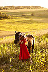 Картинки Луга Лошадь Шляпы Платья