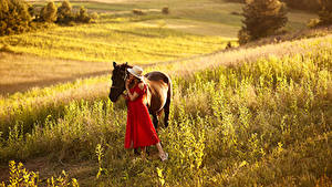 Картинки Луга Лошади Шляпа Платье Девушки