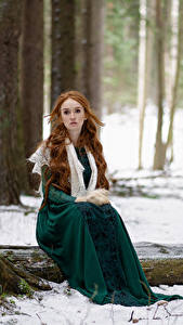 Фотографии Лес Снега Дерево Сидящие Платья Рыжие Смотрит Anna Zhu, Kirill Sokolov Девушки
