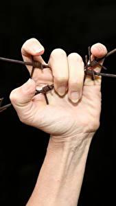 Картинки Пальцы Руки Колючая проволока На черном фоне