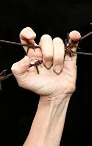Картинки Пальцы Руки Колючая проволока Черный фон
