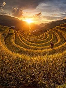 Картинка Рассветы и закаты Поля Вьетнам Солнце