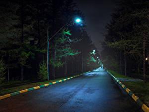 Фотография Россия Москва Дороги Ночь Деревьев Уличные фонари Koptevo Природа