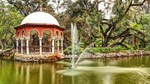 Фотография Испания Парки Пруд Фонтаны Деревья Maria Luisa Park Sevilla Природа