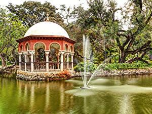 Фотография Испания Парки Пруд Фонтаны Дерево Maria Luisa Park Sevilla Природа