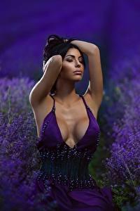 Фото Лаванда Поля Вырез на платье Грудь Платья Красивые Девушки