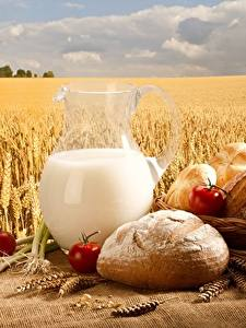 Фотографии Пшеница Молоко Хлеб Поля Кувшин Продукты питания