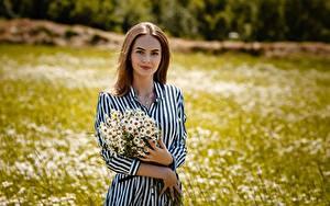 Фотографии Ромашка Букет Шатенки Платья Рука Alexey Gilev