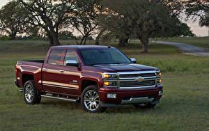 Картинка Chevrolet Бордовый Пикап кузов Металлик 2014 Silverado High Country Автомобили