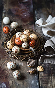 Фото Пасха Яйцо Гнездо Еда