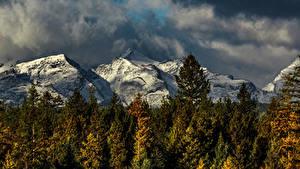 Обои Штаты Горы Леса Осень Mission Mountains Montana