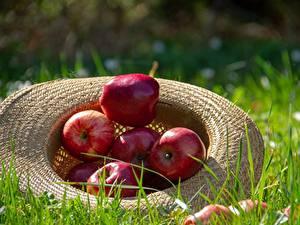 Картинка Яблоки Траве Шляпы Красная