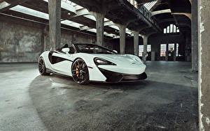 Фотография McLaren Белая Металлик Родстер 2018 McLaren Senna машина