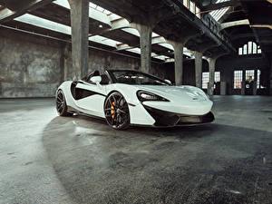 Фотография McLaren Белый Металлик Родстер 2018 McLaren Senna Машины
