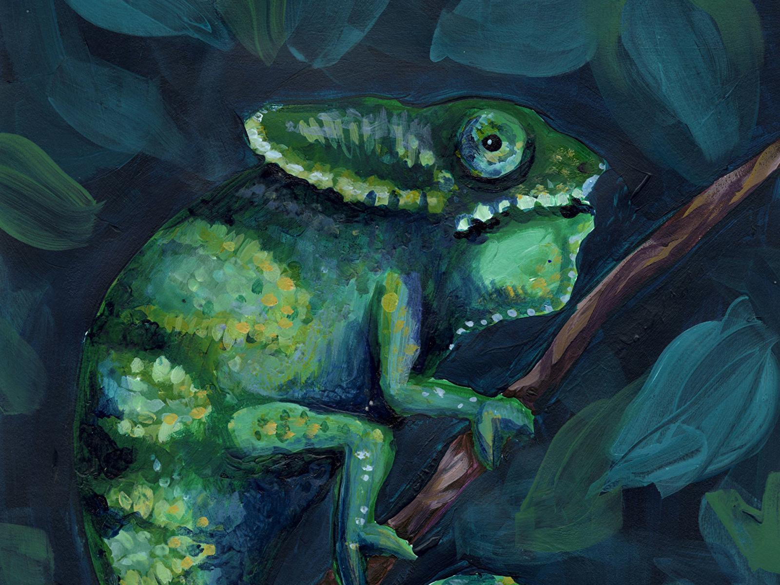 Картинка хамелеон 7