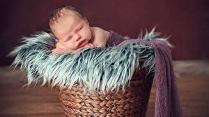 Фотографии Корзины Младенца Сон