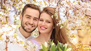 Обои Мужчины Любовь Тюльпаны Двое Улыбается Шатенки Красивая Девушки