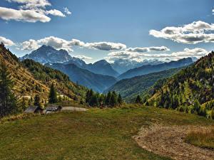 Обои для рабочего стола Италия Пейзаж Гора Луга Небо Ель Облачно Veneto Природа