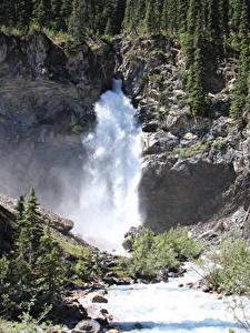 Картинки Канада Реки Водопады Камень Лес Скала River Kicking Horse, British Columbia, Yoho National Park Природа