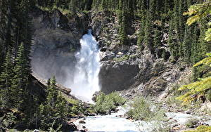 Картинки Канада Речка Водопады Камень Леса Утес River Kicking Horse, British Columbia, Yoho National Park