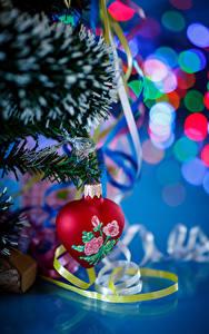 Фотография Рождество Ветвь Ленточка Сердечко