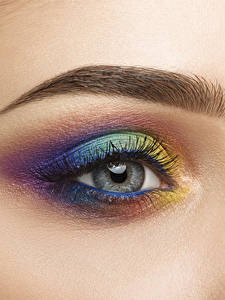 Фотография Глаза Ресница Крупным планом Макросъёмка Разноцветные Мейкап Красивые Девушки