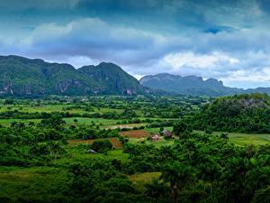 Фото Куба Горы Поля Пальмы Кусты Vinales