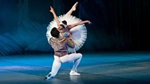 Картинки Мужчины Балете Танцы Двое Поцелуй Swan lake девушка