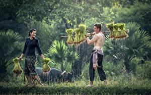 Картинка Азиаты Мужчины 2 Трава Девушки