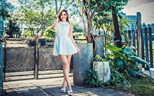 Обои Азиаты Шатенки Платье Ноги Взгляд Девушки