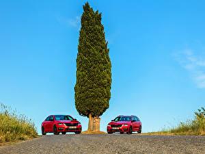 Фотографии Skoda 2 Красный Металлик 2017 Octavia Автомобили