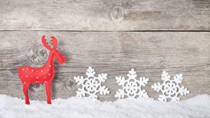 Фотография Новый год Олени Доски Снеге Снежинка Стена