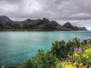 Обои Норвегия Реки Горы HDRI Кусты Husoy
