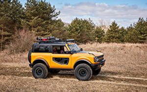 Фото Форд SUV Сбоку Желтые Деревья Bronco 2, Door Preproduction, 2020