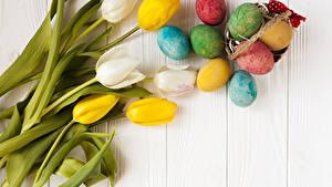 Картинка Праздники Пасха Тюльпан Доски Яйцо Цветы