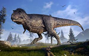 Обои для рабочего стола Динозавры Крупным планом Тираннозавр рекс Трава 3D Графика Животные