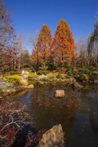 Фото США Парки Осень Пруд Камни Деревья Gibbs Gardens