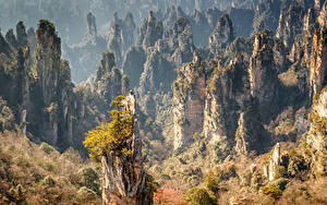 Картинки Китай Парки Леса Осень Утес Zhangjiajie National Forest Park Природа