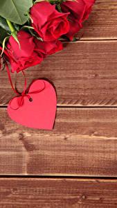 Фото Праздники Роза Доски Красная Сердечко Цветы