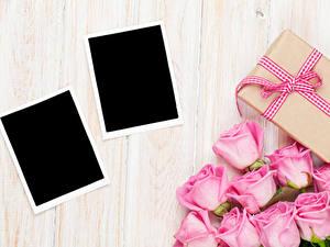Фотография Праздники Розы Доски Шаблон поздравительной открытки Розовый Подарки Цветы